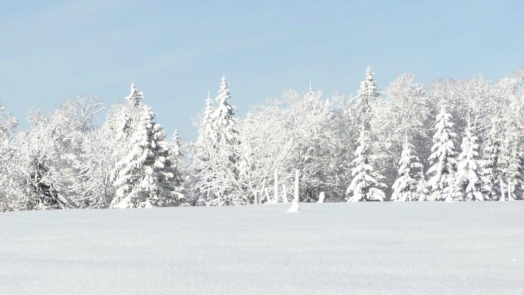hiver à La Boissaude