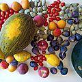 🍉 les 4 fruitariens 🏡