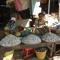 Dans le marché de Battambang