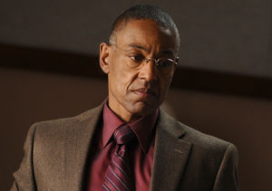 gustavo_fring_picture