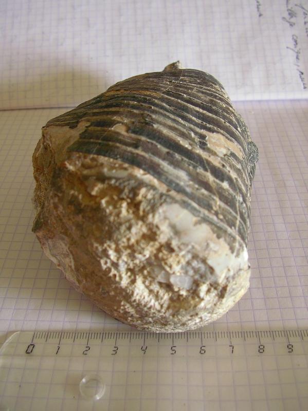 Urkulu-aout15-041
