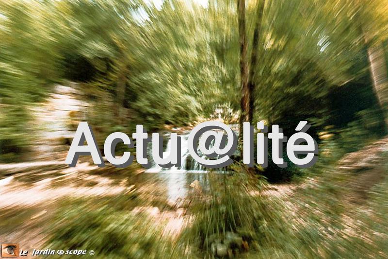 Actu@lité