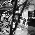 Graffs de grave