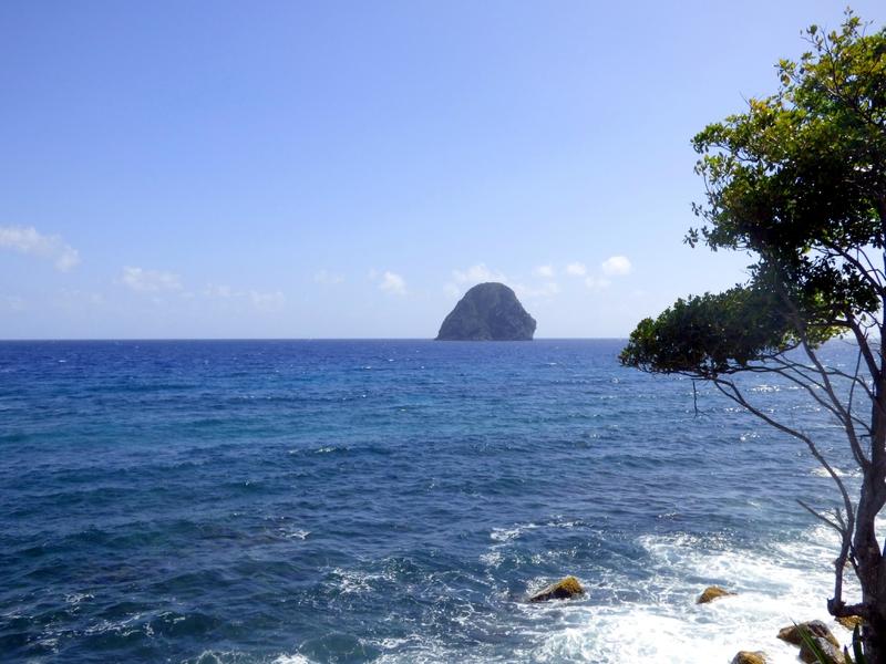 30 01 16 (Martinique)119
