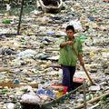 Le sac plastique : un allié devenu un véritable fléau écologique !