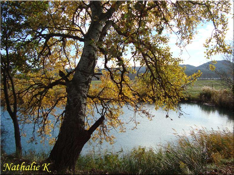 _c_LNK_le_12_novembre_2010_019_copie
