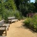 Au festival des Jardins de Chaumont sur Loire (41)