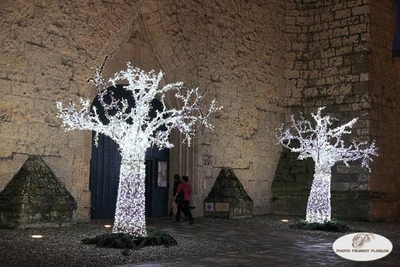 LECTOURE_les_nuits_de_lumieres_arbres_illumines_devant_la_cathedrale_Saint_Gervais_et_Saint_Protais