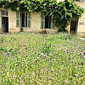 15 Juin 2017 Saumur (20)