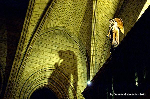 Notre Dame 850 084
