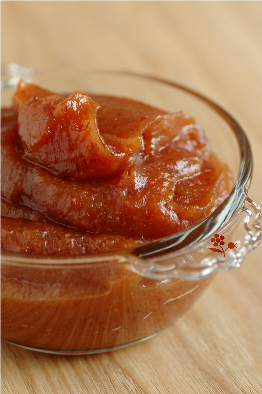 Pâte à tartiner aux fruits séchés (abricot, pomme, canneberge)_2