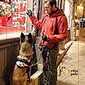 Education canine sur angers – enfin des cours collectifs en situation réelle !!!