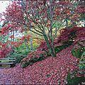 2012_11_11-POM-P1140388