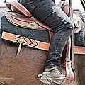 Des chevaux....