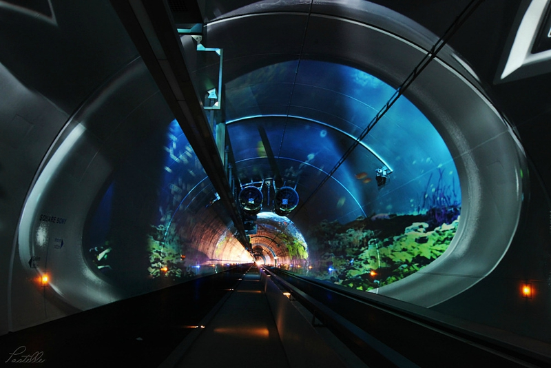Tunnel aquarium_14 20 01_7790
