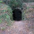 La cave voûtée