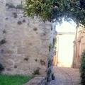 Lautrec - ruelle -