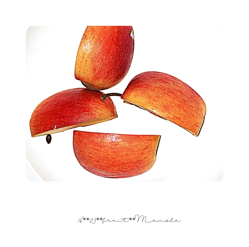 1568fruit