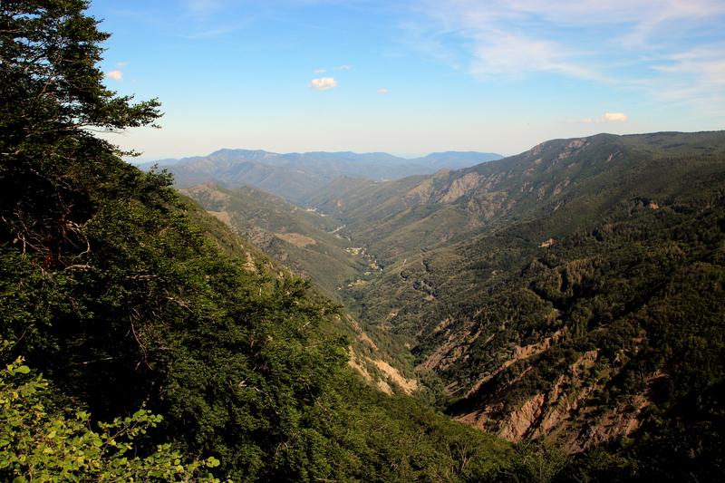124 Mont Aigoual