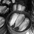 Poissons crus, poissons cuits