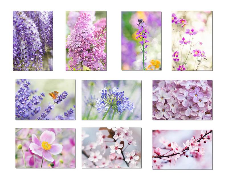 10-carte-postale-fleur