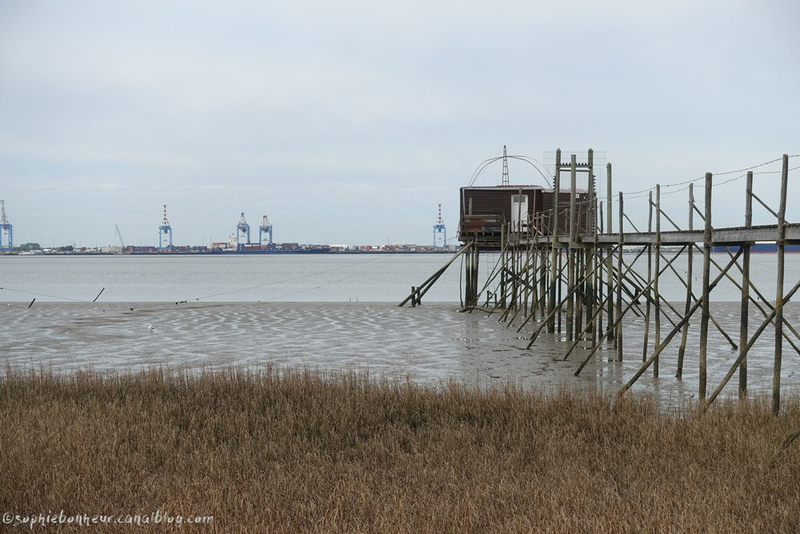 LAV pêcherie Loire