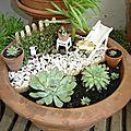 Jardin miniature suite...