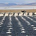 pollution par extraction du lithium nécessaire aux batteries (smartphones, voitures électriques...)