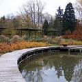 La roseraie du Parc Floral en automne