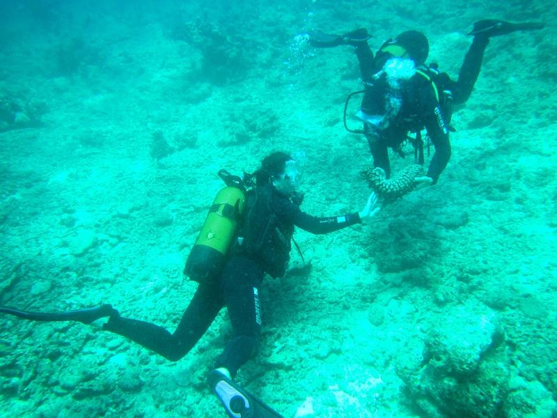 Nata en plongée avec Benjamin