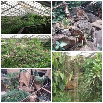La ferme aux crocodiles (7)