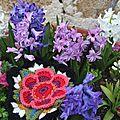 Cal frida's flower / bloc 6 : l'anneau de roses