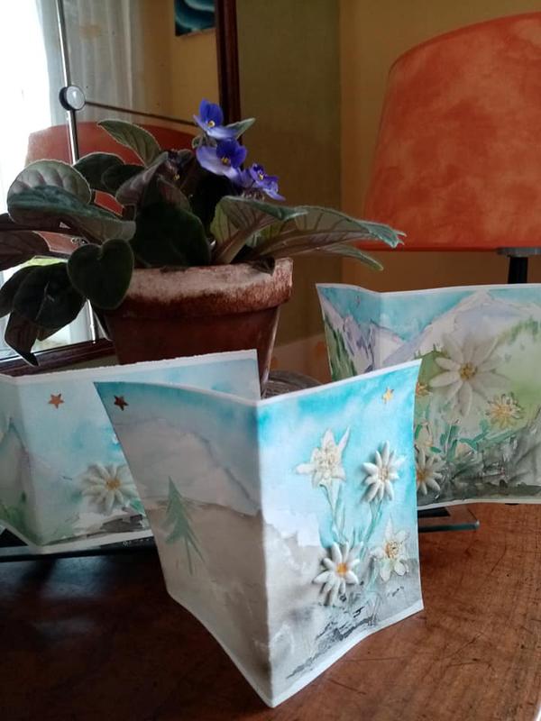 Carte Edelweiss 1