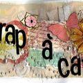 ScrapaCat [800x600]