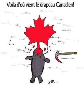 Canada copie