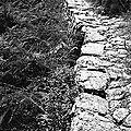 Le Sentier de La VIALE -1991 ( LOZERE-48 )