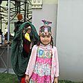 - fête de l'iris 2013