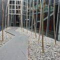 Macro (1) daniela perego