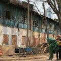Destruction : marché aux oiseaux - kunming