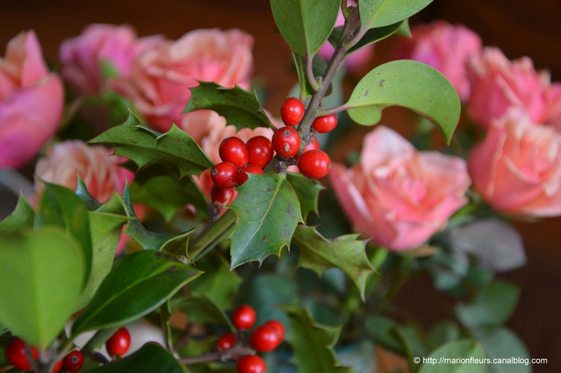 Houx et Rose à Noël ; marionfleurs