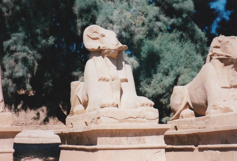 Karnak - Allée des boucs