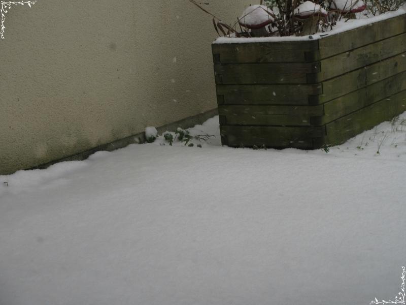 neige (96)