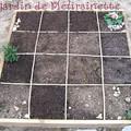 Mise en place des échalottes et nouveaux semis