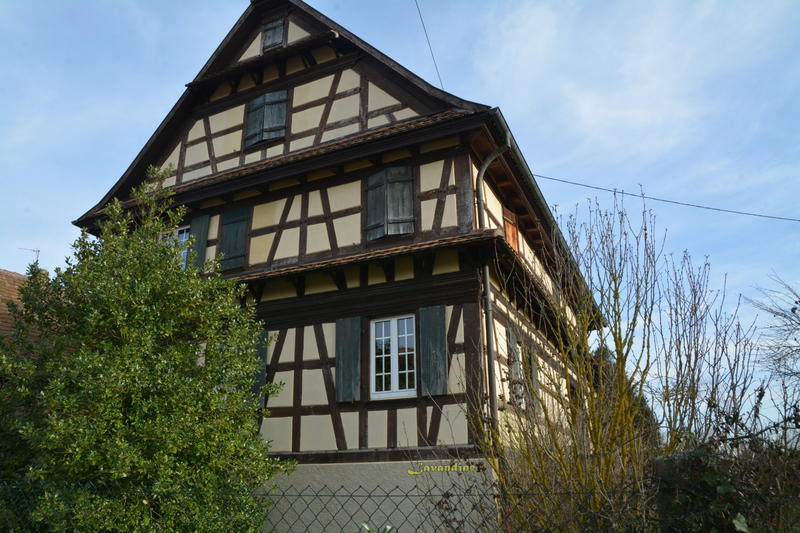 Hindisheim 02 19 (20)