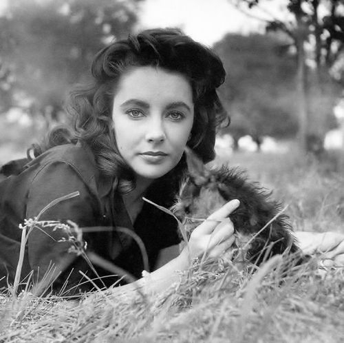 1956-liz_taylor_by_peter_basch-2