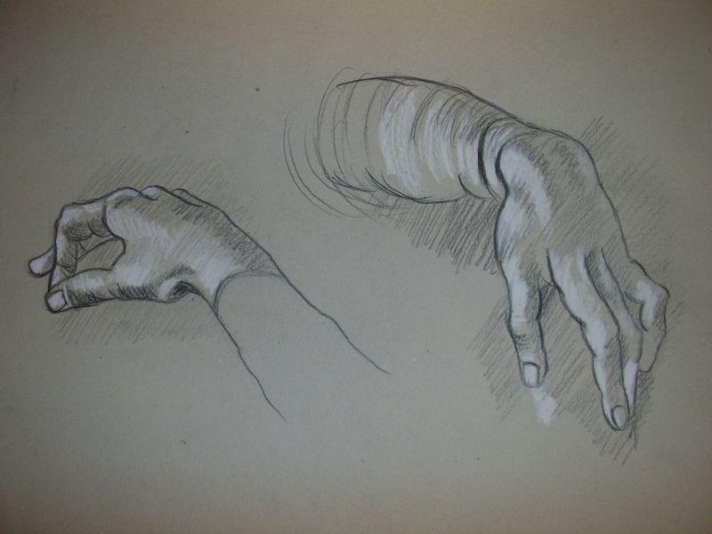 Les mains de leonard de vinci les pinceaux de malela - Main dessin crayon ...
