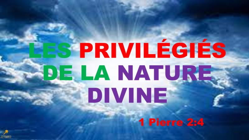 LES PRIVILÉGIÉS DE LA NATURE DIVINE