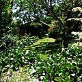 1-Jardin de Clogs et Lac Magn