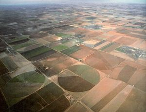 agriculture_texas