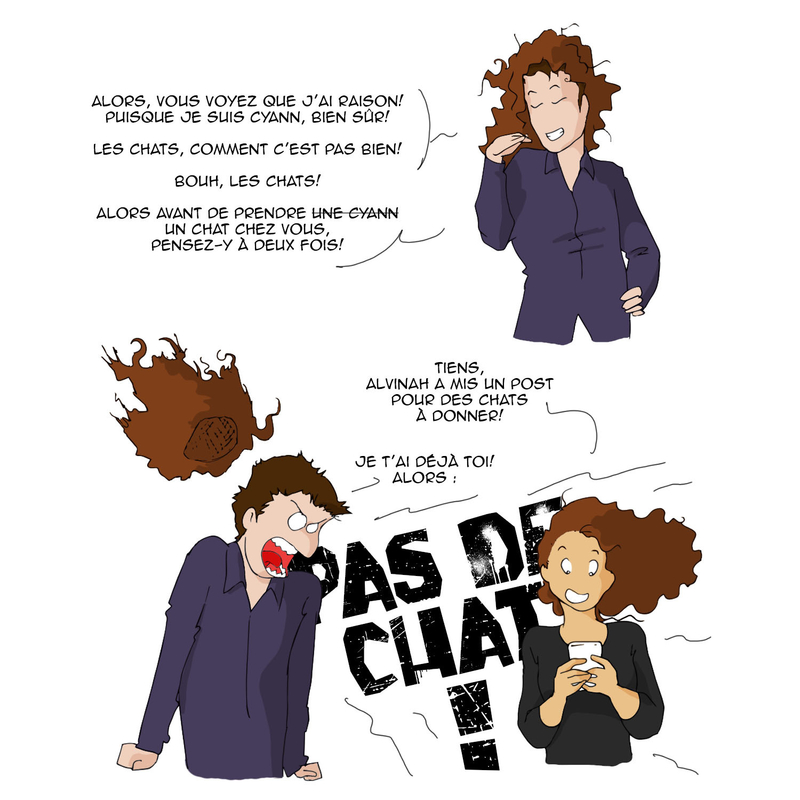 05 13 raisons pas de chat